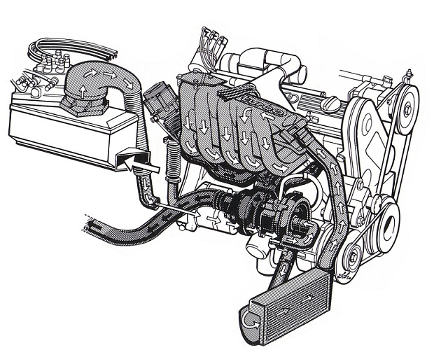 audiquattro1981engine.jpg